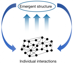 emergence in complex systems